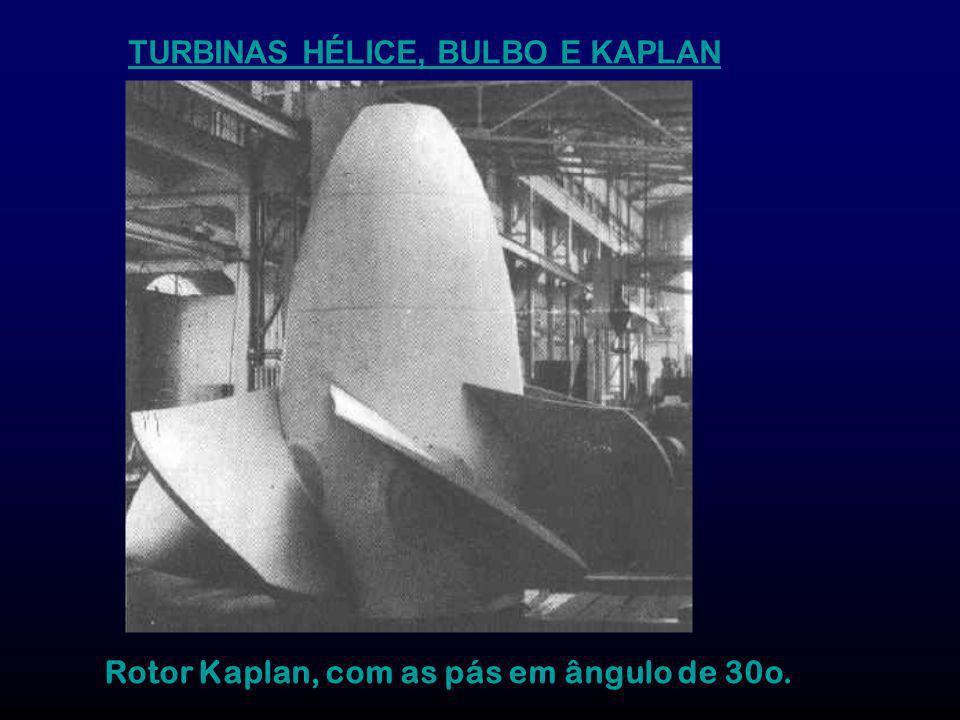 TURBINAS HÉLICE, BULBO E KAPLAN Rotor Kaplan, com as pás em ângulo de 30o.