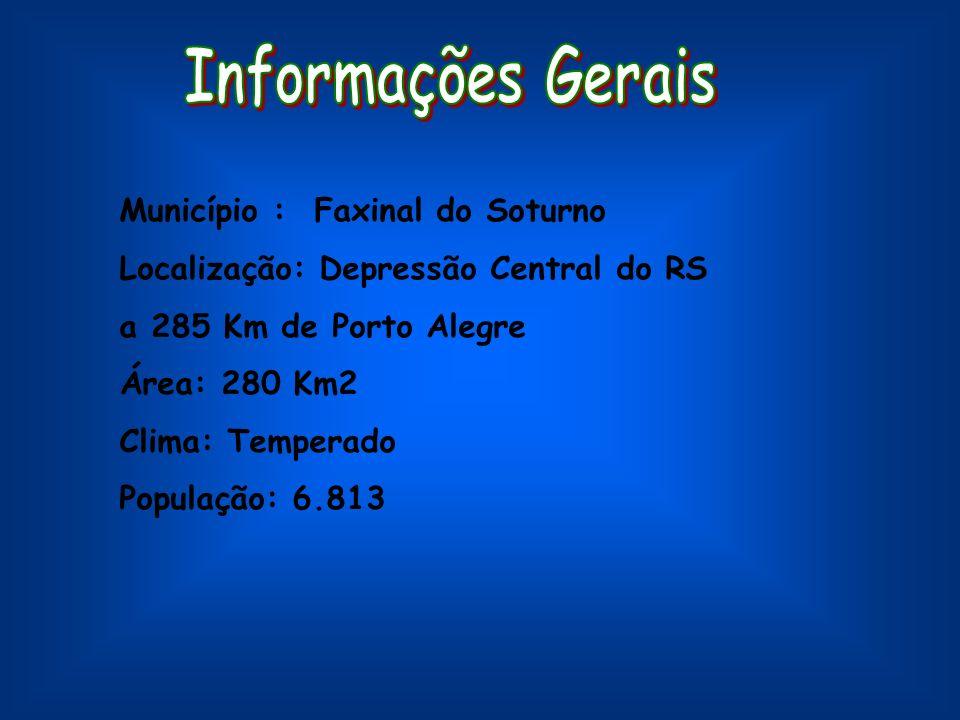 Município : Faxinal do Soturno Localização: Depressão Central do RS a 285 Km de Porto Alegre Área: 280 Km2 Clima: Temperado População: 6.813