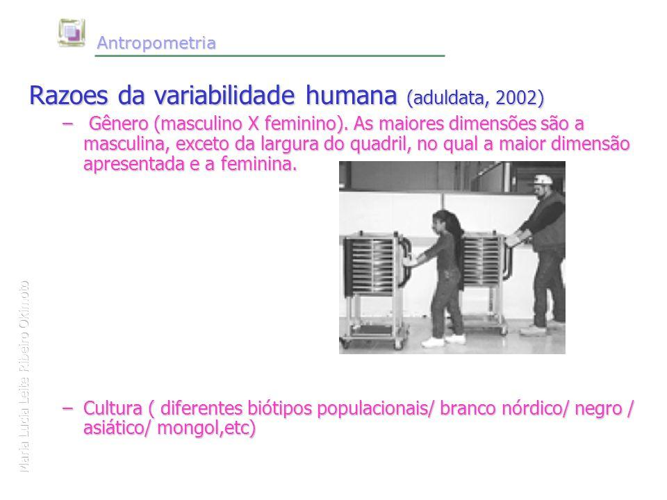 Maria Lucia Leite Ribeiro Okimoto Antropometria Antropometria Razoes da variabilidade humana (aduldata, 2002) – Gênero (masculino X feminino). As maio