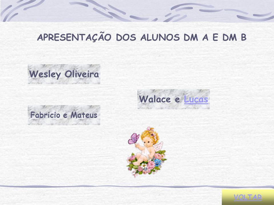 Wesley Oliveira Fabricio e Mateus Walace e Lucas VOLTAR APRESENTAÇÃO DOS ALUNOS DM A E DM B