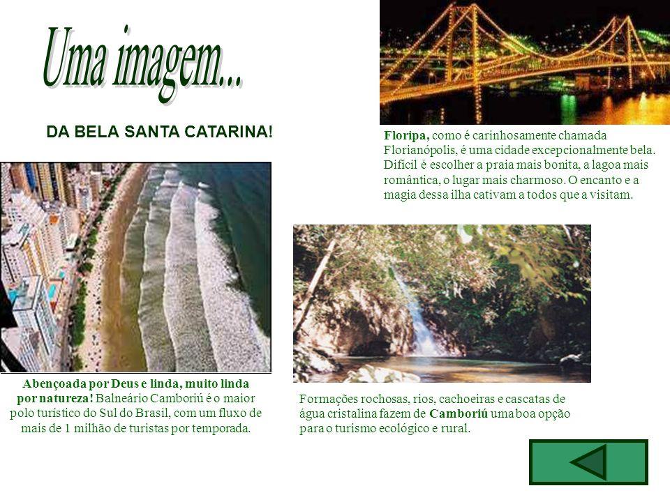 Abençoada por Deus e linda, muito linda por natureza! Balneário Camboriú é o maior polo turístico do Sul do Brasil, com um fluxo de mais de 1 milhão d