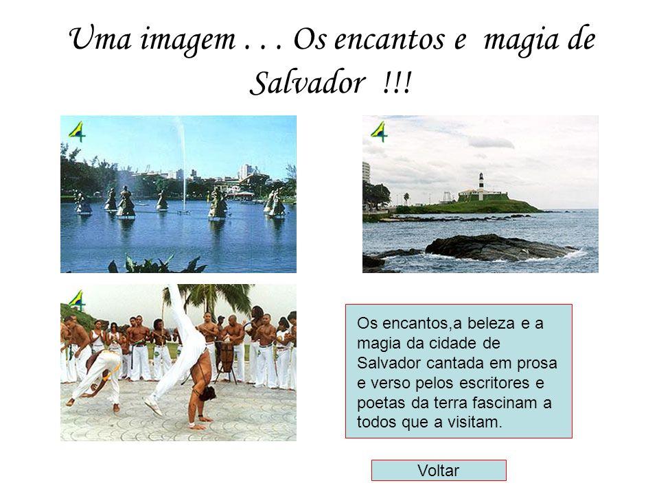 Uma imagem...Os encantos e magia de Salvador !!.