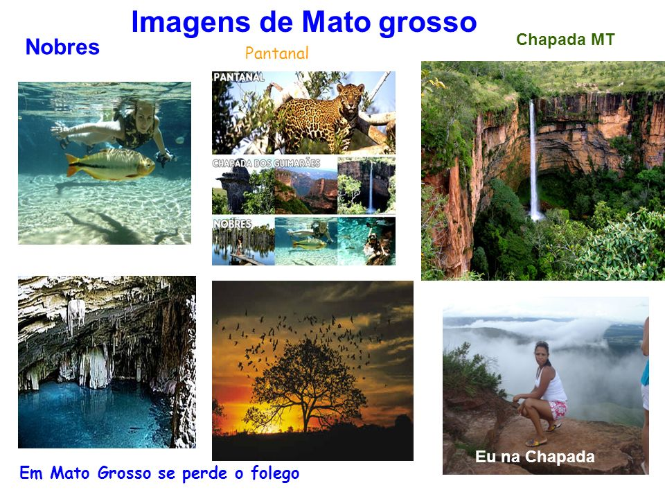 Nobres Imagens de Mato grosso Pantanal Chapada MT Eu na Chapada Em Mato Grosso se perde o folego Pantanal
