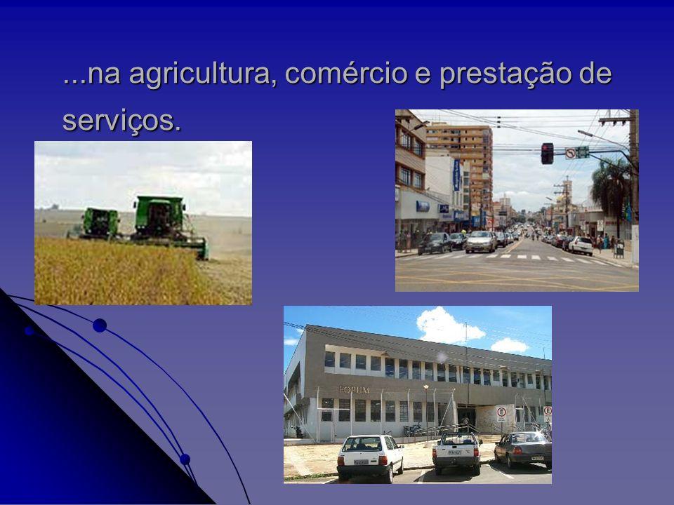 Desponta como grande centro educacional e tecnológico, tendo instalado em seu território o único curso de Biotecnologia da América Latina...