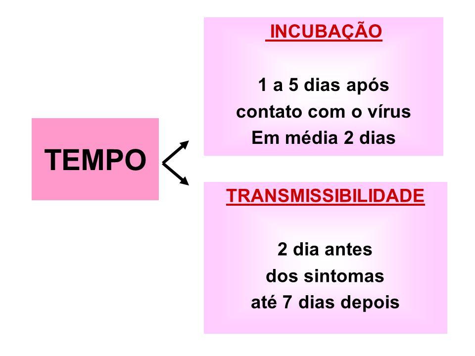 INCUBAÇÃO 1 a 5 dias após contato com o vírus Em média 2 dias TRANSMISSIBILIDADE 2 dia antes dos sintomas até 7 dias depois TEMPO