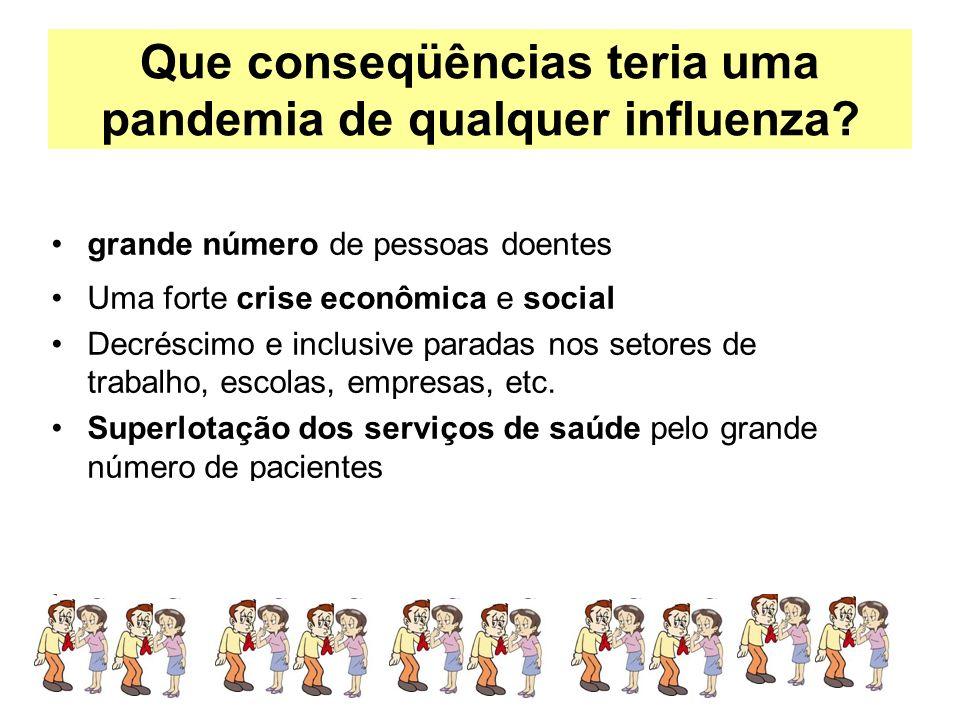 Que conseqüências teria uma pandemia de qualquer influenza? grande número de pessoas doentes Uma forte crise econômica e social Decréscimo e inclusive