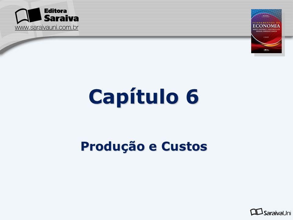 Capítulo 6 Produção e Custos