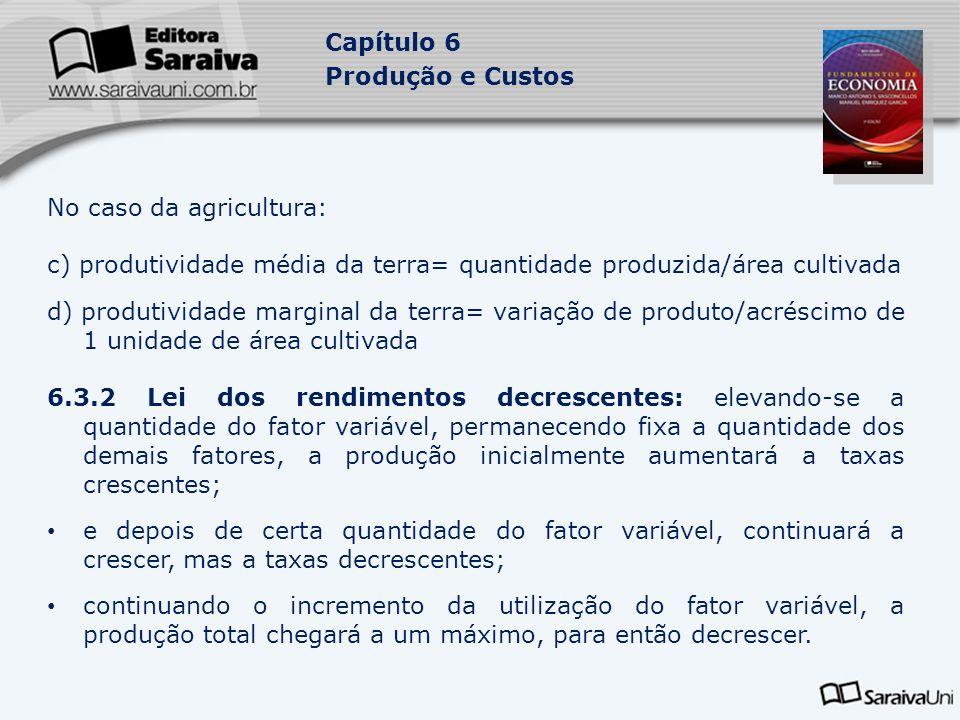 Capítulo 6 Produção e Custos No caso da agricultura: c) produtividade média da terra= quantidade produzida/área cultivada d) produtividade marginal da