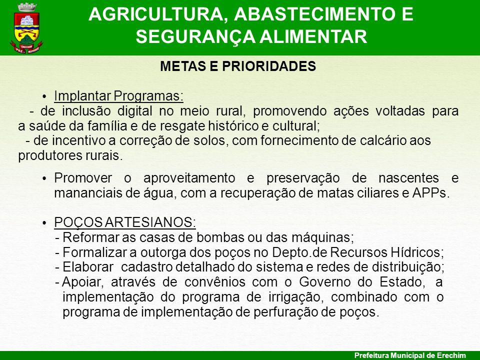 Prefeitura Municipal de Erechim METAS E PRIORIDADES Implantar Programas: - de inclusão digital no meio rural, promovendo ações voltadas para a saúde d