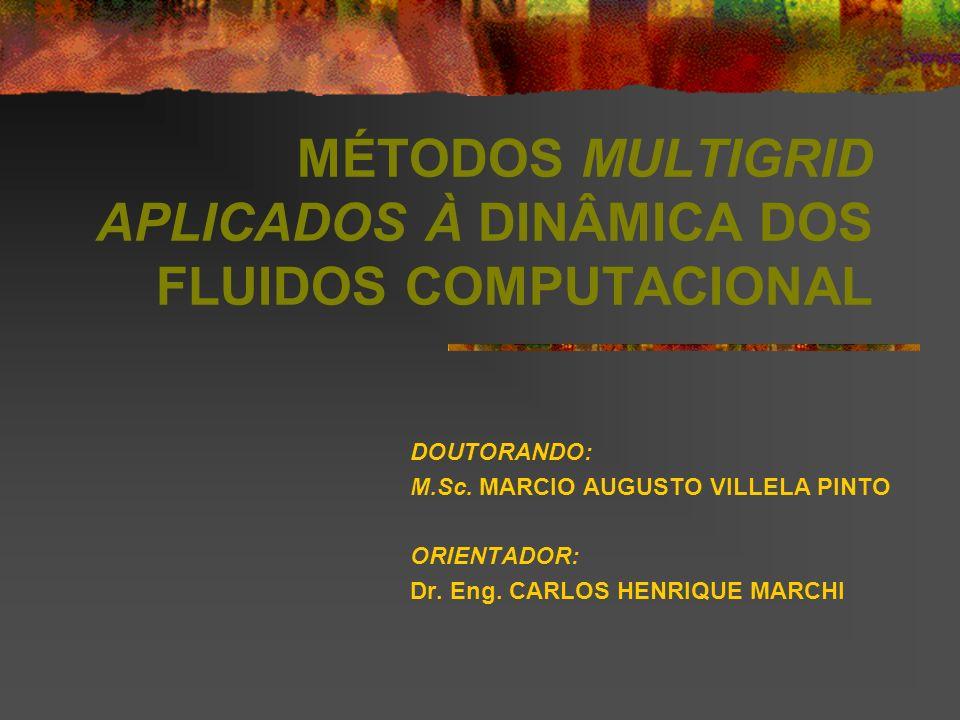 MÉTODOS MULTIGRID APLICADOS À DINÂMICA DOS FLUIDOS COMPUTACIONAL DOUTORANDO: M.Sc. MARCIO AUGUSTO VILLELA PINTO ORIENTADOR: Dr. Eng. CARLOS HENRIQUE M