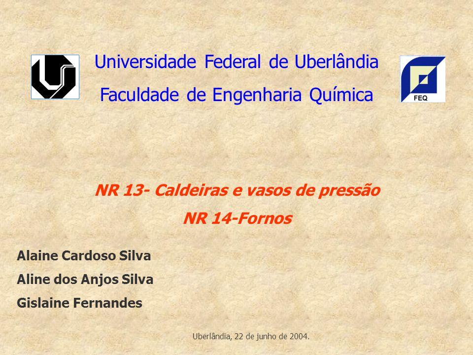 Universidade Federal de Uberlândia Faculdade de Engenharia Química NR 13- Caldeiras e vasos de pressão NR 14-Fornos Alaine Cardoso Silva Aline dos Anj