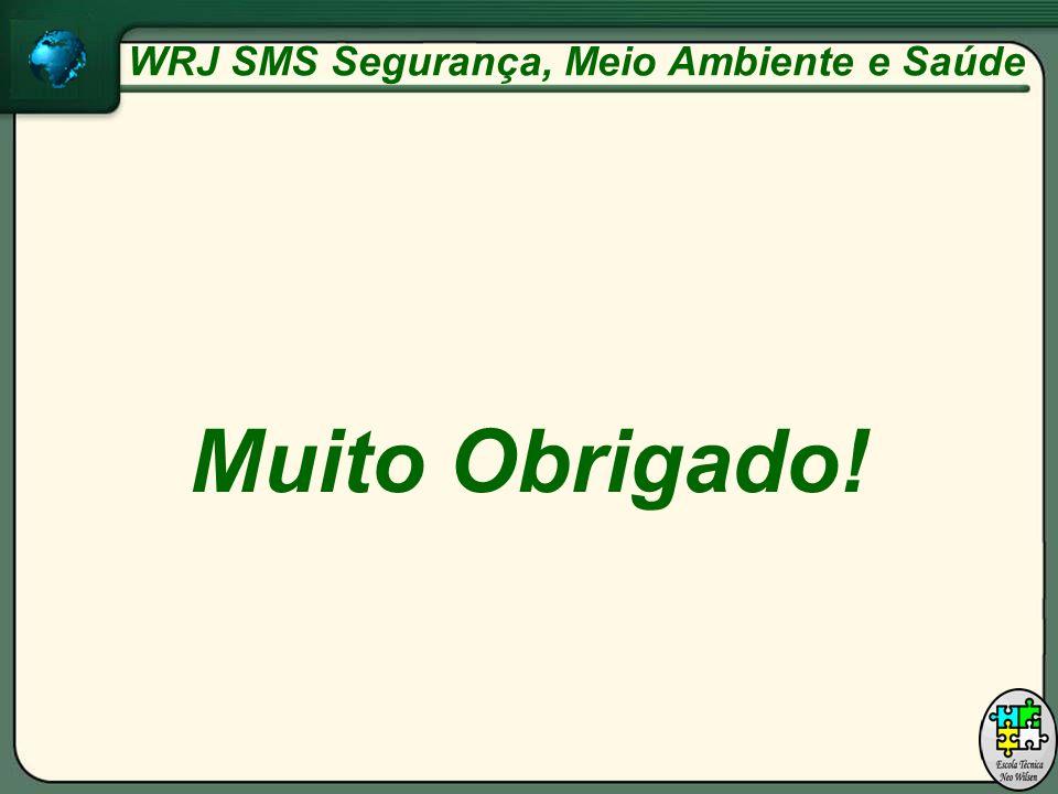 Muito Obrigado! WRJ SMS Segurança, Meio Ambiente e Saúde