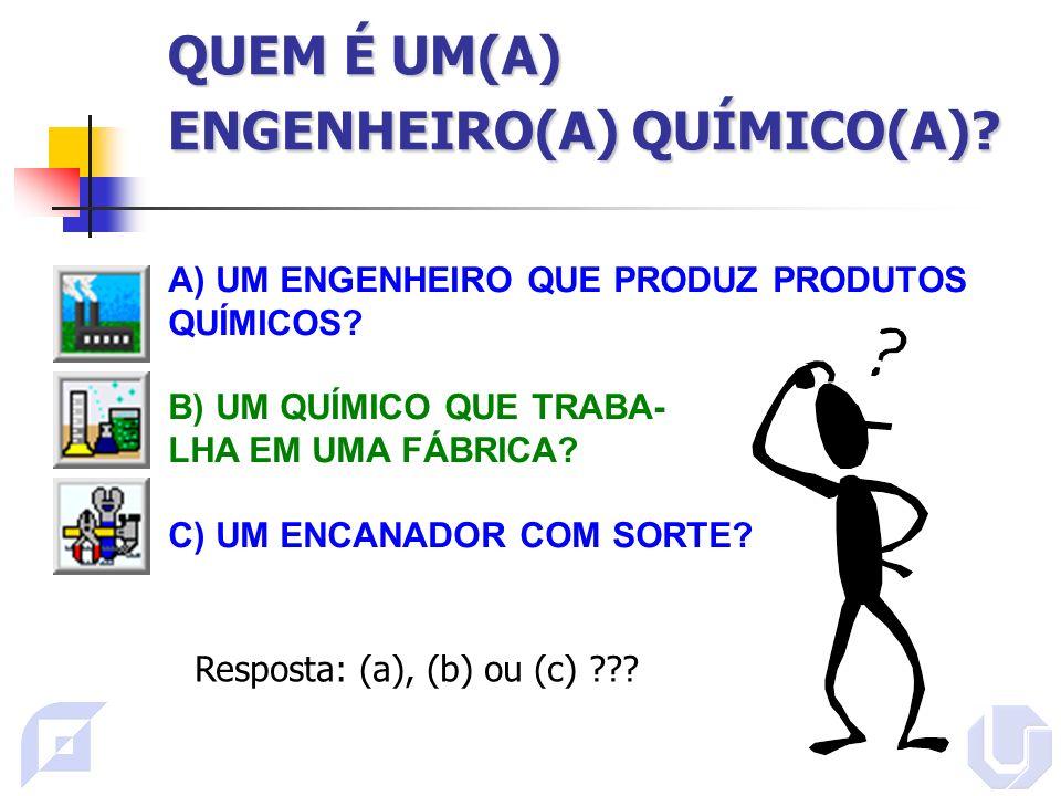 QUEM É UM(A) ENGENHEIRO(A) QUÍMICO(A)?