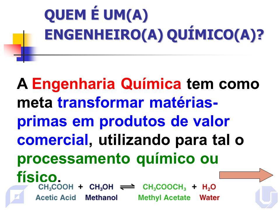 QUEM É UM(A) ENGENHEIRO(A) QUÍMICO(A).