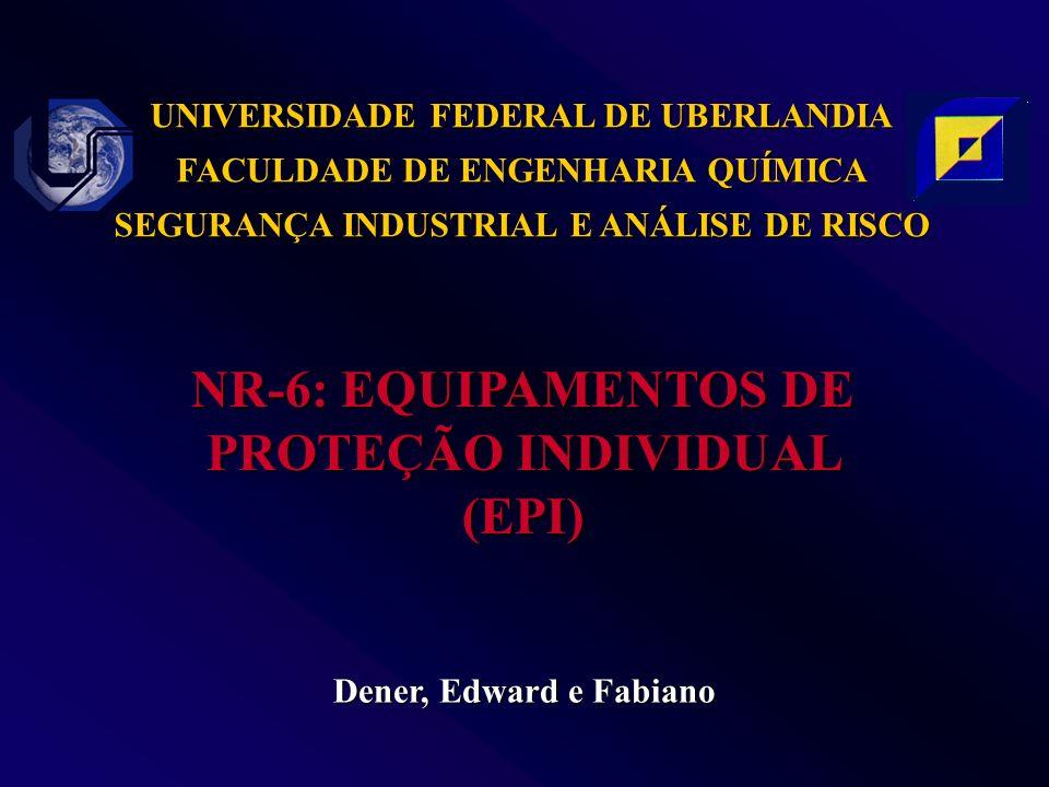 UNIVERSIDADE FEDERAL DE UBERLANDIA FACULDADE DE ENGENHARIA QUÍMICA SEGURANÇA INDUSTRIAL E ANÁLISE DE RISCO Dener, Edward e Fabiano NR-6: EQUIPAMENTOS