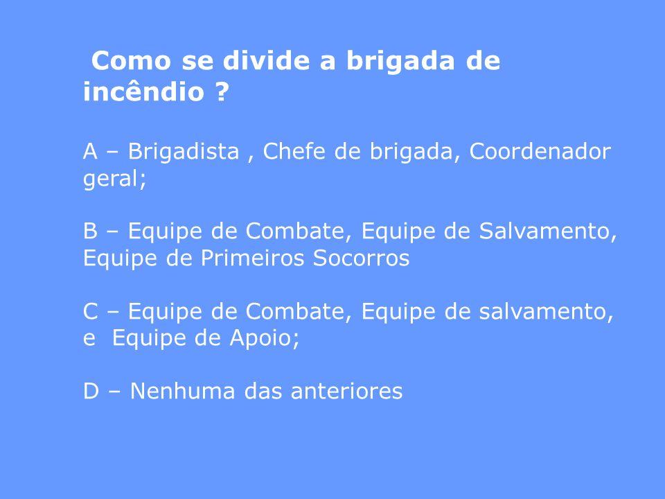 Como se divide a brigada de incêndio ? A – Brigadista, Chefe de brigada, Coordenador geral; B – Equipe de Combate, Equipe de Salvamento, Equipe de Pri