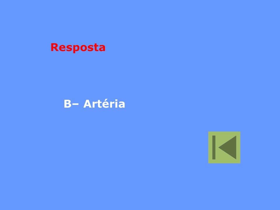 B– Artéria Resposta