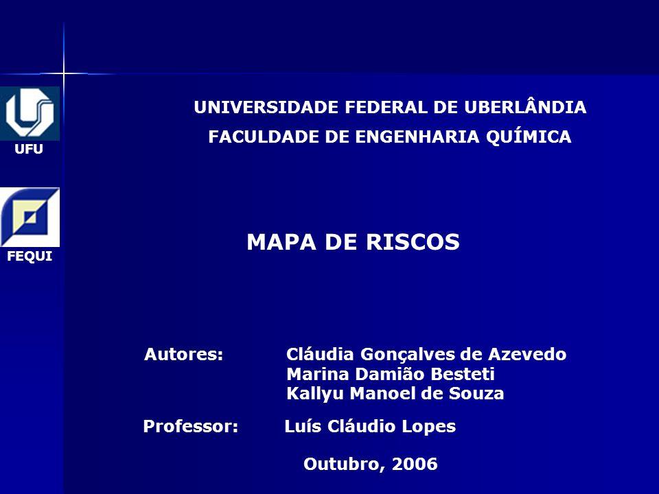 UFU FEQUI MAPA DE RISCOS Outubro, 2006 Autores: Luís Cláudio Lopes Cláudia Gonçalves de Azevedo Marina Damião Besteti Kallyu Manoel de Souza Professor: UNIVERSIDADE FEDERAL DE UBERLÂNDIA FACULDADE DE ENGENHARIA QUÍMICA