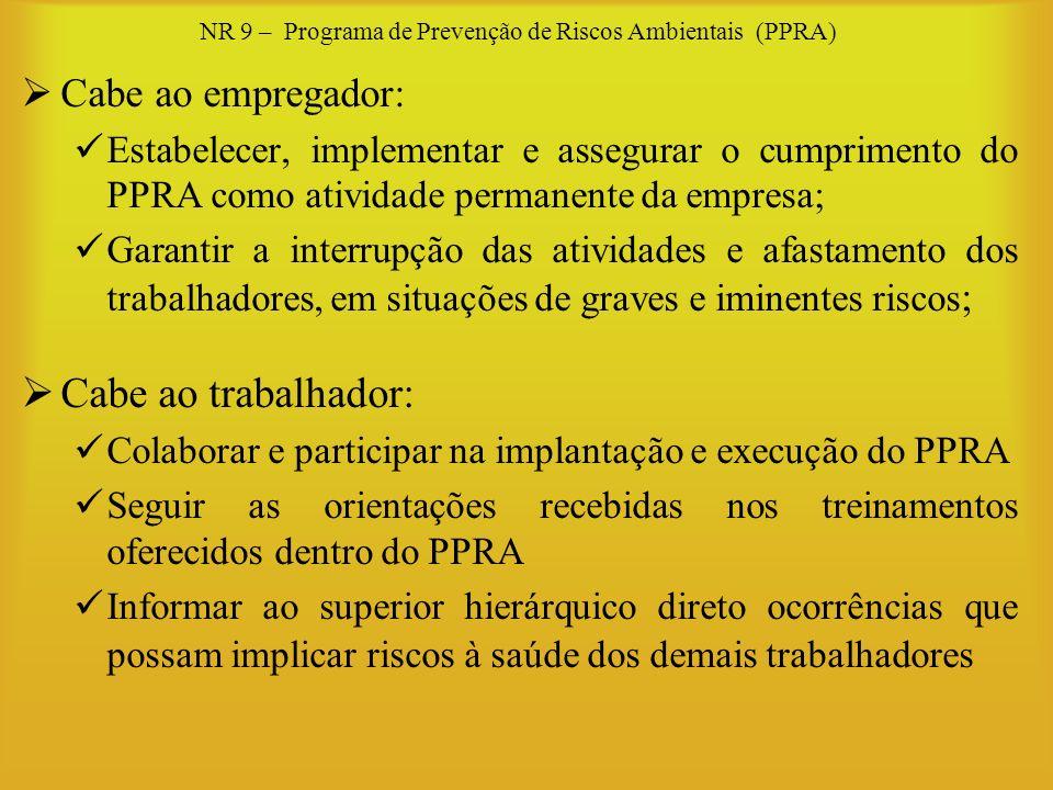 NR 9 – Programa de Prevenção de Riscos Ambientais (PPRA) Cabe ao empregador: Estabelecer, implementar e assegurar o cumprimento do PPRA como atividade
