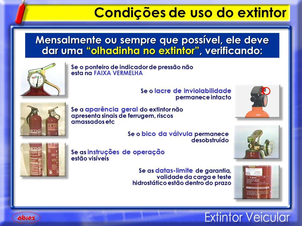 Condições de uso do extintor IMPORTANTE Se algum desses itens estiver em desacordo, o extintor deverá ser submetido à manutenção ou substituído por um novo.