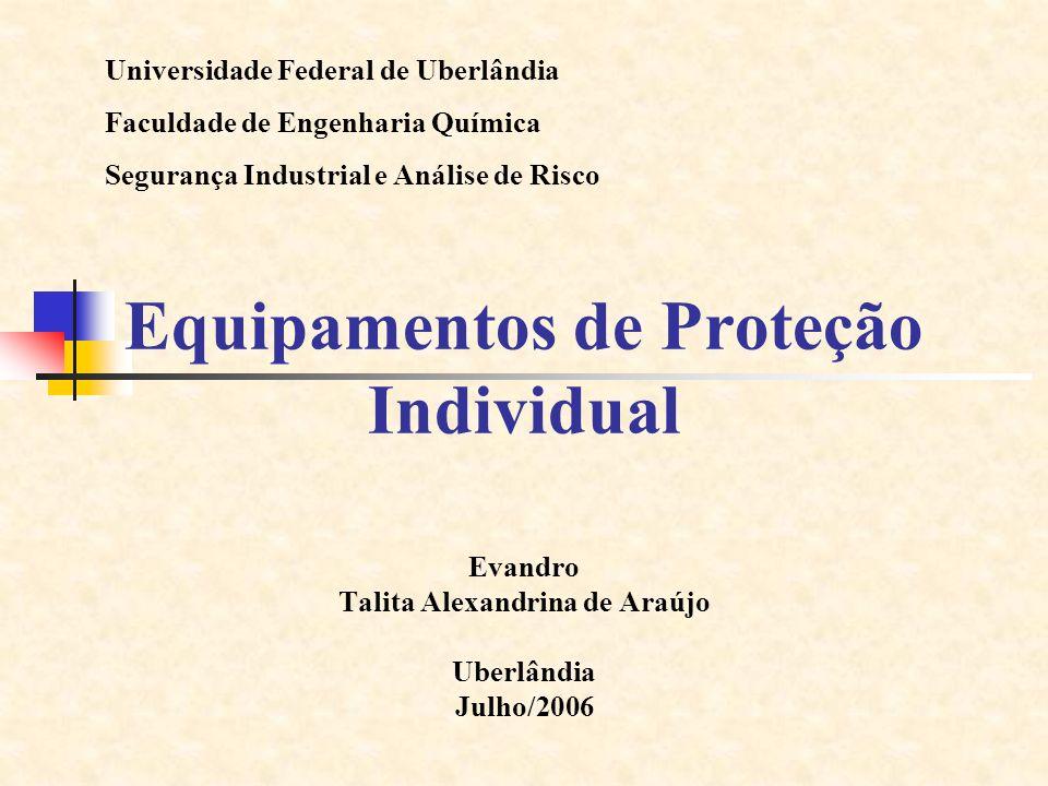 Equipamentos de Proteção Individual Evandro Talita Alexandrina de Araújo Uberlândia Julho/2006 Universidade Federal de Uberlândia Faculdade de Engenha