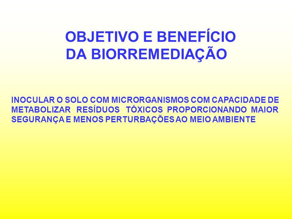 TRATAMENTO DE ÁGUA COM AGUAPÉ O aguapé, Eichhornia crassipes tem sido a hidrófita mais estudada para o tratamento de água com plantas.