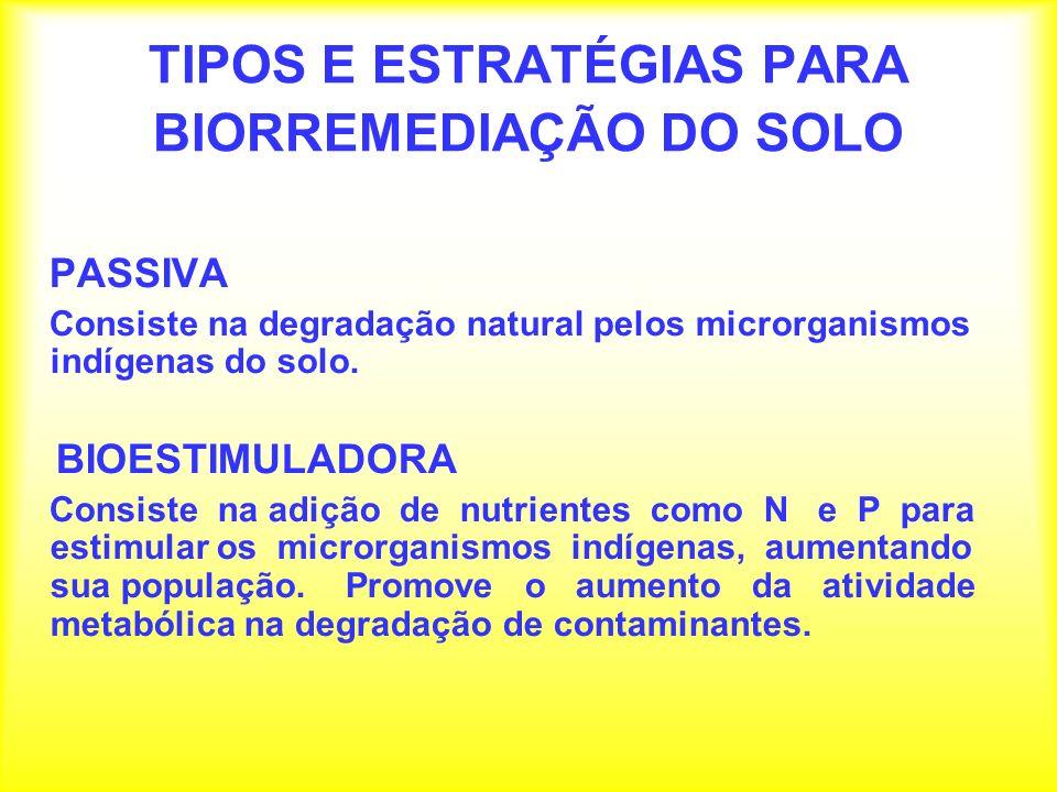 VANTAGENS DA BIORREMEDIAÇÃO Pode ser usada (in situ) reduzindo possibilidades de contaminação para os trabalhadores.