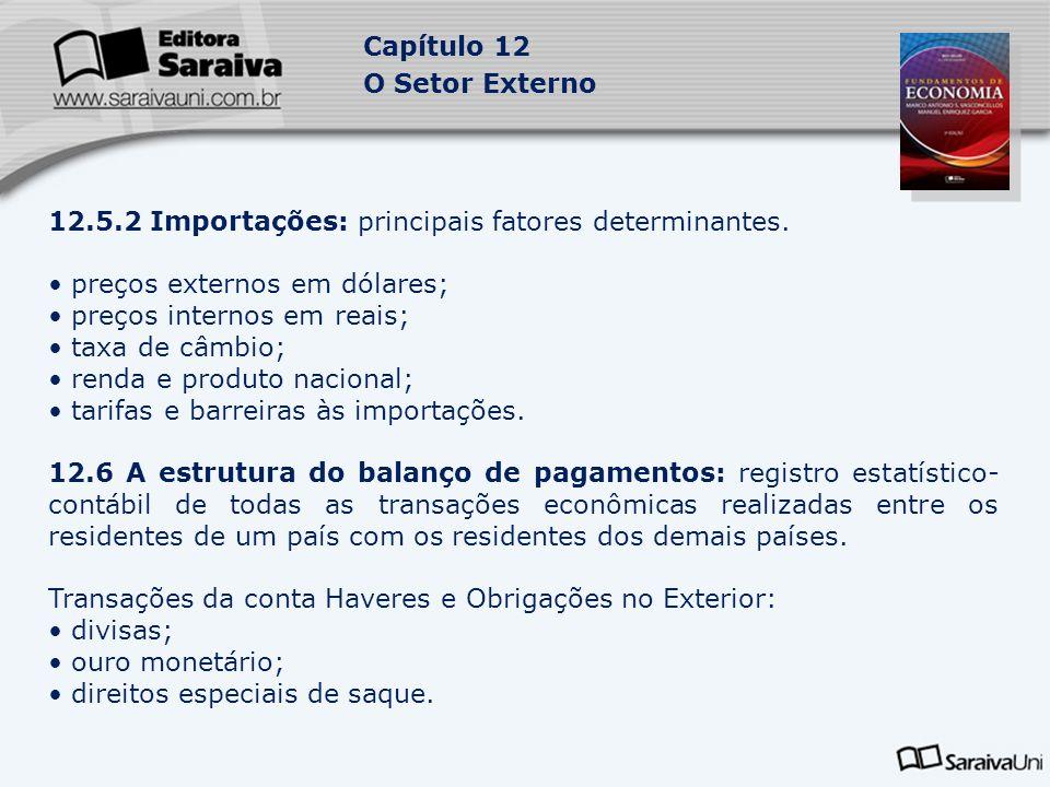 Capítulo 12 O Setor Externo 12.5.2 Importações: principais fatores determinantes.