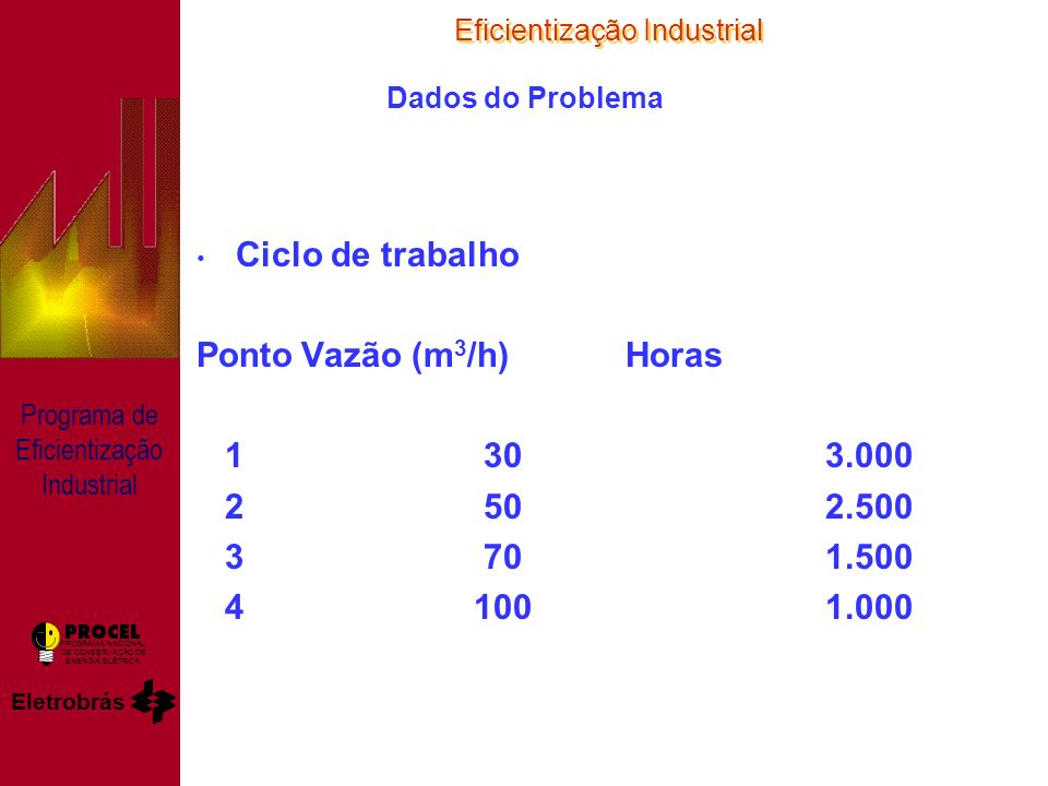 Eficientização Industrial Eletrobrás PROGRAMA NACIONAL DE CONSERVAÇÃO DE ENERGIA ELÉTRICA Programa de Eficientização Industrial Dados do Problema Ciclo de trabalho PontoVazão (m 3 /h) Horas 1 303.000 2 502.500 3 701.500 4 1001.000