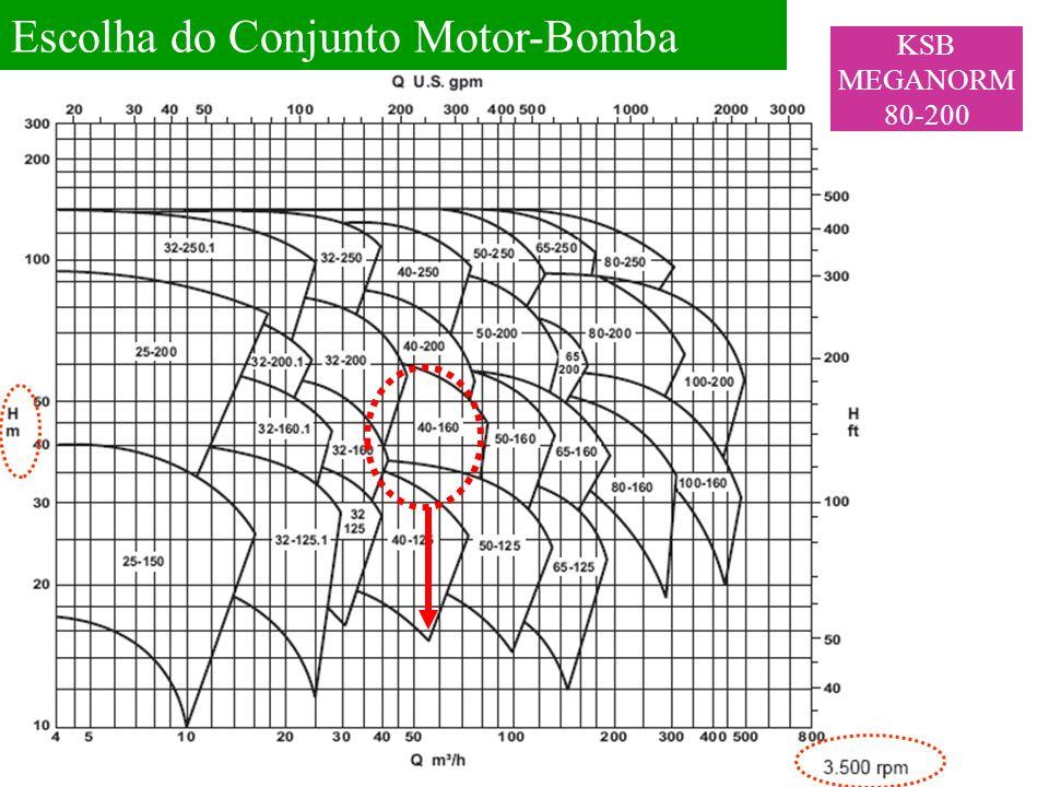 Escolha do Conjunto Motor-Bomba KSB MEGANORM 80-200