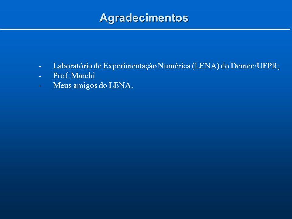 Agradecimentos -Laboratório de Experimentação Numérica (LENA) do Demec/UFPR; -Prof.