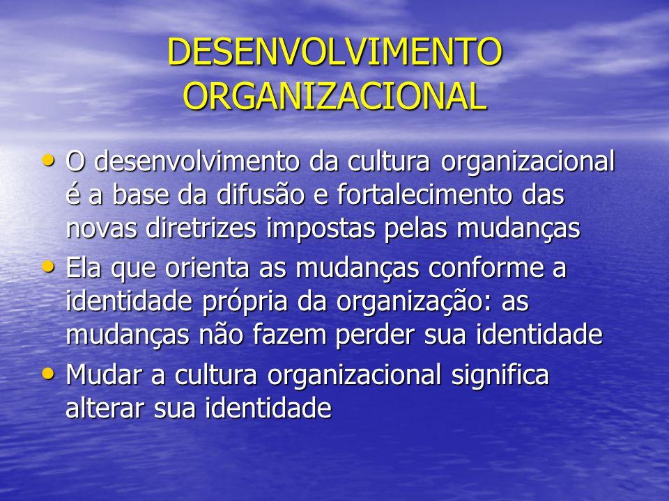 DESENVOLVIMENTO ORGANIZACIONAL O desenvolvimento da cultura organizacional é a base da difusão e fortalecimento das novas diretrizes impostas pelas mu