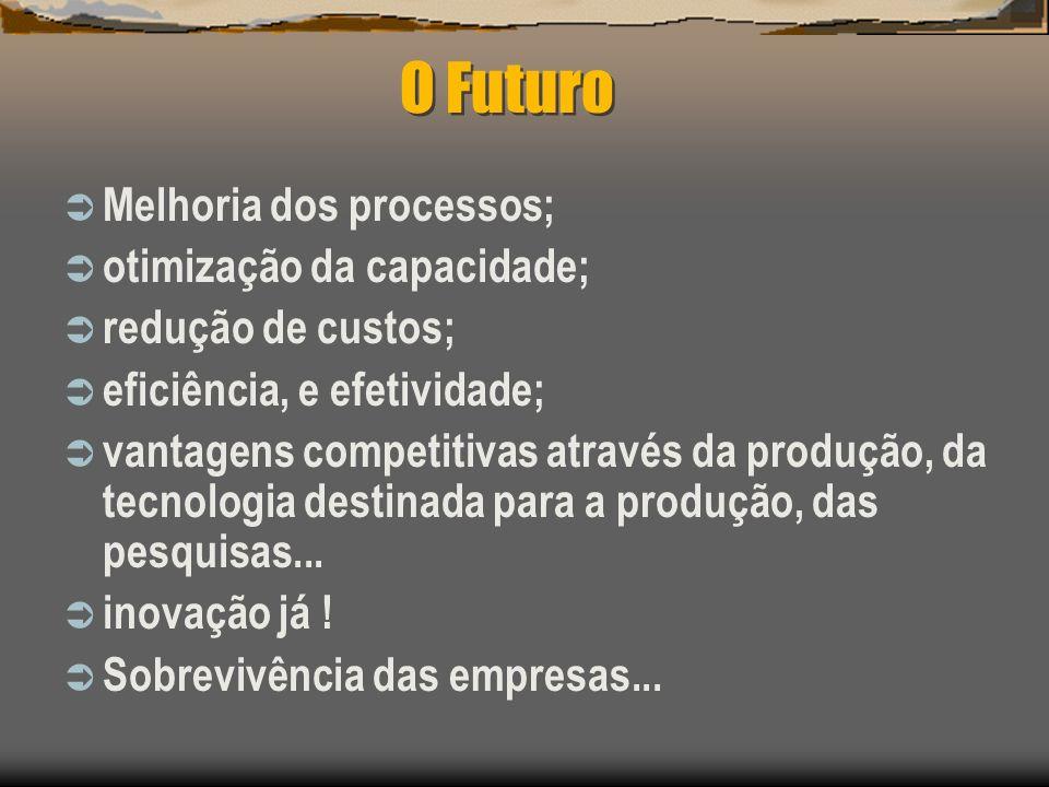 O Futuro Melhoria dos processos; otimização da capacidade; redução de custos; eficiência, e efetividade; vantagens competitivas através da produção, d