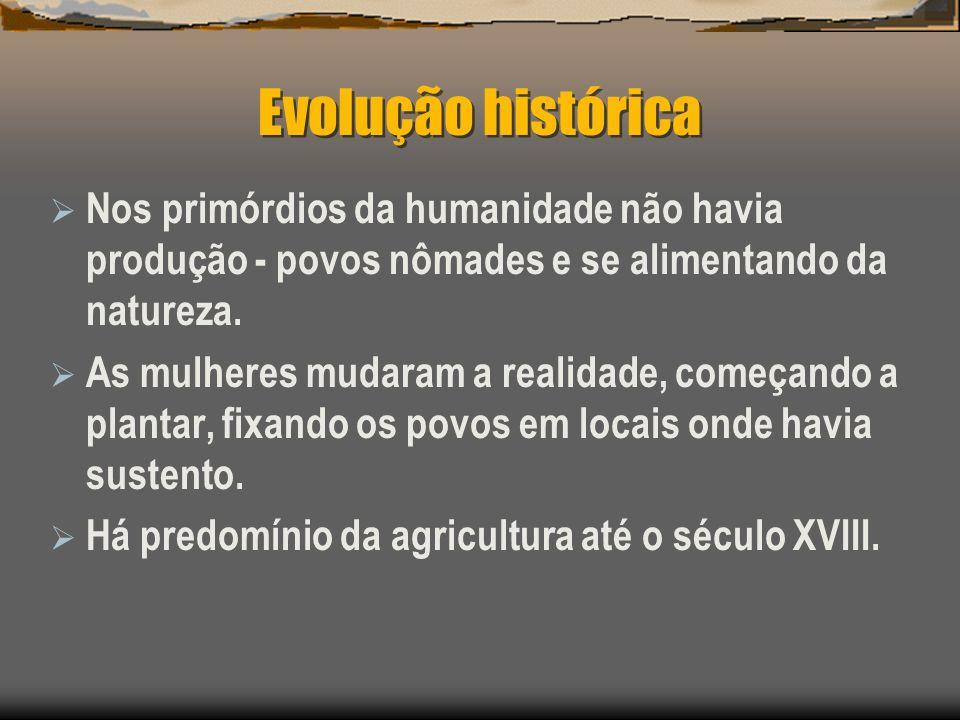 Evolução histórica Nos primórdios da humanidade não havia produção - povos nômades e se alimentando da natureza. As mulheres mudaram a realidade, come