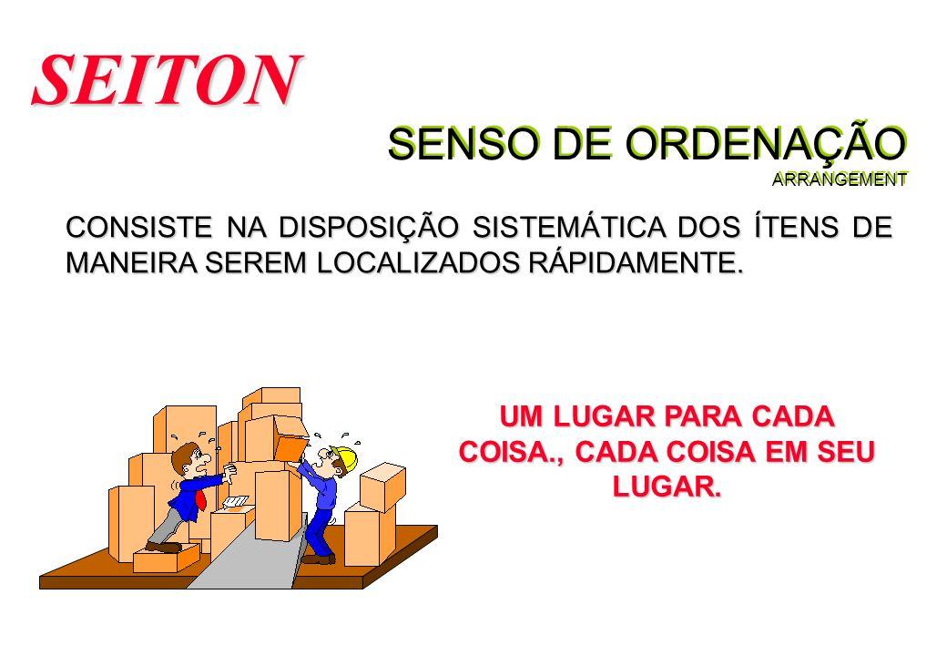 SENSO DE ORDENAÇÃO ARRANGEMENT SEITON CONSISTE NA DISPOSIÇÃO SISTEMÁTICA DOS ÍTENS DE MANEIRA SEREM LOCALIZADOS RÁPIDAMENTE.