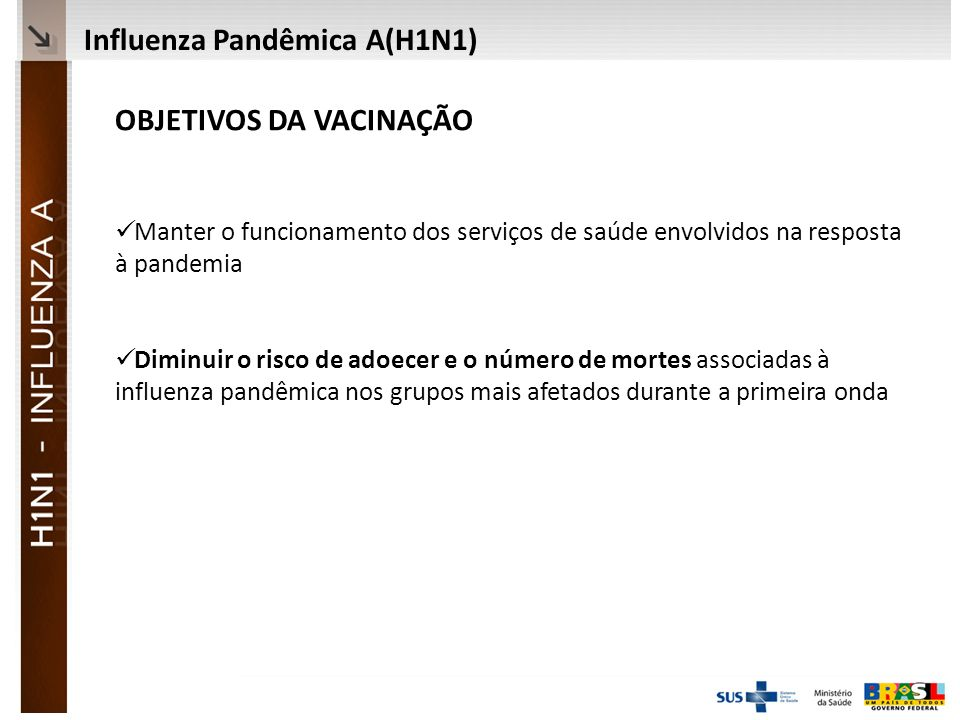 Ministério da Saúde OBJETIVOS DA VACINAÇÃO Manter o funcionamento dos serviços de saúde envolvidos na resposta à pandemia Diminuir o risco de adoecer e o número de mortes associadas à influenza pandêmica nos grupos mais afetados durante a primeira onda Influenza Pandêmica A(H1N1)