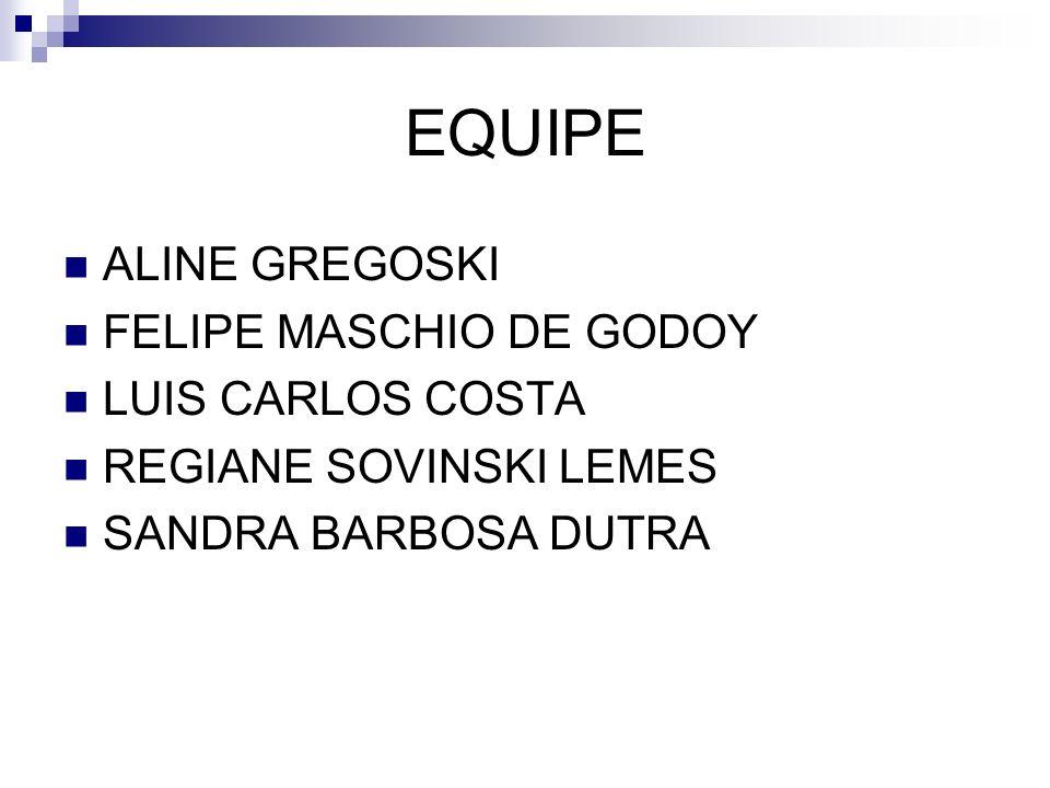 EQUIPE ALINE GREGOSKI FELIPE MASCHIO DE GODOY LUIS CARLOS COSTA REGIANE SOVINSKI LEMES SANDRA BARBOSA DUTRA