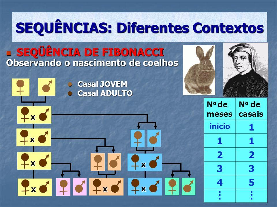 A sequência que fornece o n o de casais de coelhos é obtida da seguinte forma: 1 1 1 + 1 = 2 1 + 1 = 2 1 + 2 = 3 1 + 2 = 3 2 + 3 = 5 2 + 3 = 5 3 + 5 = 8 3 + 5 = 8 5 + 8 = 13 5 + 8 = 13......