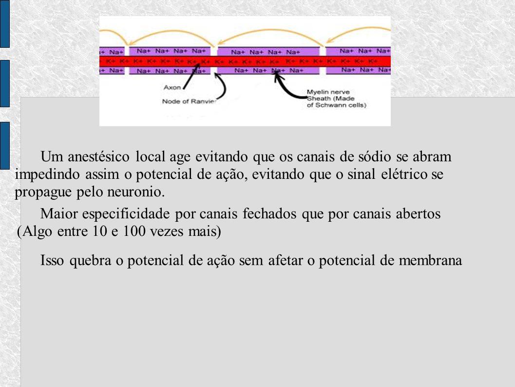 Um anestésico local age evitando que os canais de sódio se abram impedindo assim o potencial de ação, evitando que o sinal elétrico se propague pelo n