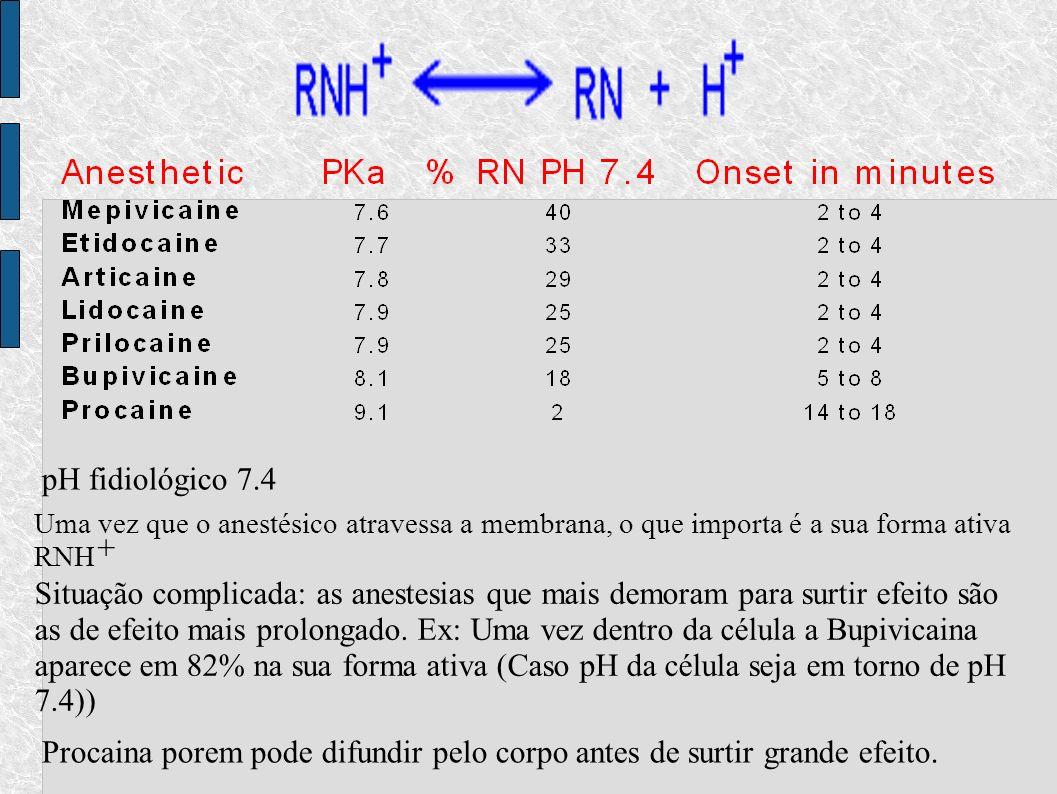 pH fidiológico 7.4 Uma vez que o anestésico atravessa a membrana, o que importa é a sua forma ativa RNH + Situação complicada: as anestesias que mais