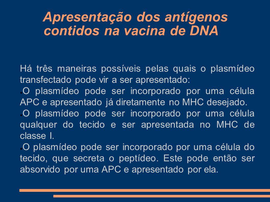 Apresentação dos antígenos contidos na vacina de DNA Há três maneiras possíveis pelas quais o plasmídeo transfectado pode vir a ser apresentado: O pla