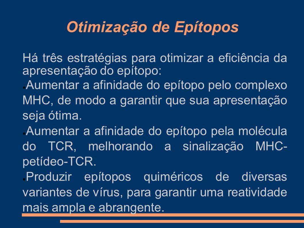 Otimização de Epítopos Há três estratégias para otimizar a eficiência da apresentação do epítopo: Aumentar a afinidade do epítopo pelo complexo MHC, d