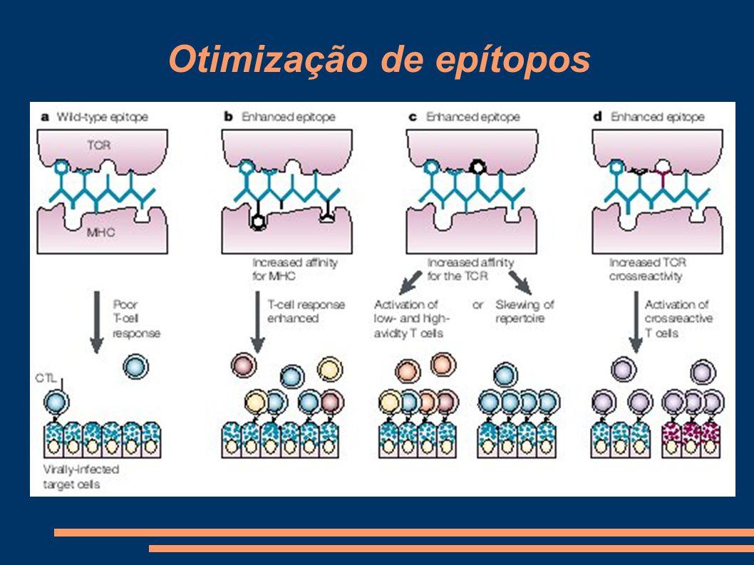 Moléculas adjuvantes e co- estimuladoras Moléculas co-estimuladoras e adjuvantes são um componente muito importante para a eficiência de uma vacina.