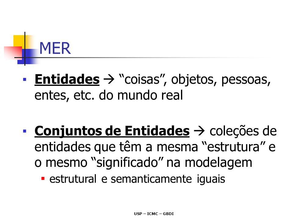 USP – ICMC – GBDI MER não trata Entidades individuais, apenas Conjuntos de Entidades Notação DER: retângulo Pessoa Disciplina Conjunto de Entidades