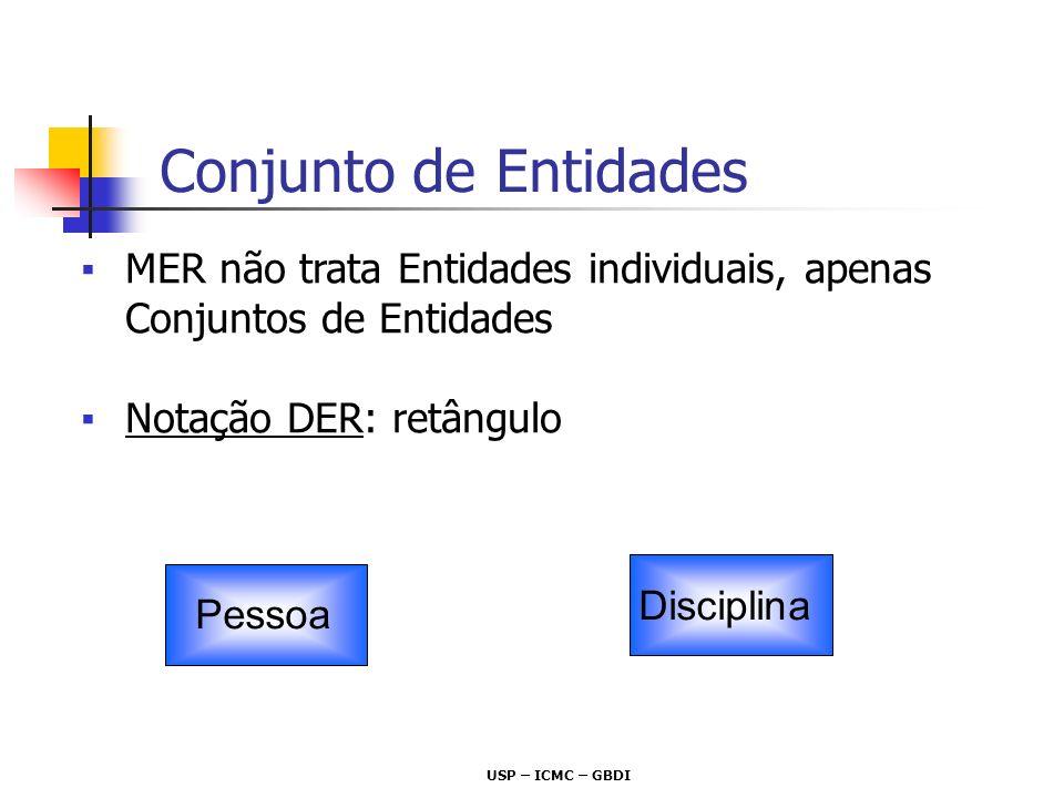 USP – ICMC – GBDI Relacionamentos associações entre entidades do mundo real Conjuntos de Relacionamentos relacionamentos entre entidades dos mesmos CEs Pessoa Disciplina Conjunto de Relacionamentos