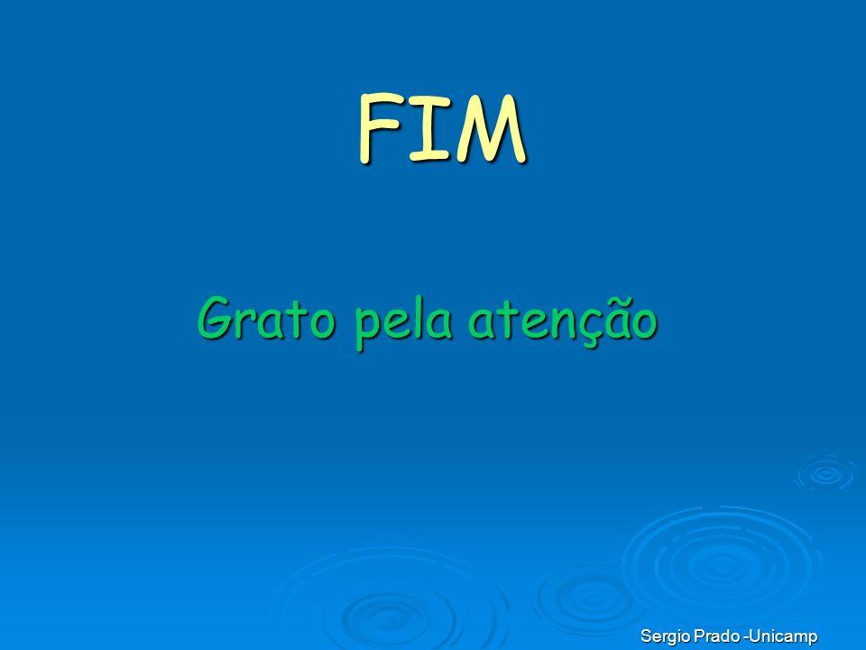 Sergio Prado -Unicamp Grato pela atenção FIM