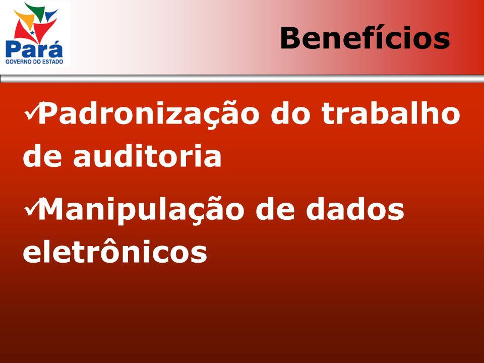 Padronização do trabalho de auditoria Manipulação de dados eletrônicos Benefícios