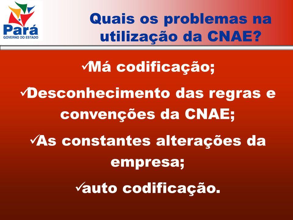 Má codificação; Desconhecimento das regras e convenções da CNAE; As constantes alterações da empresa; auto codificação.