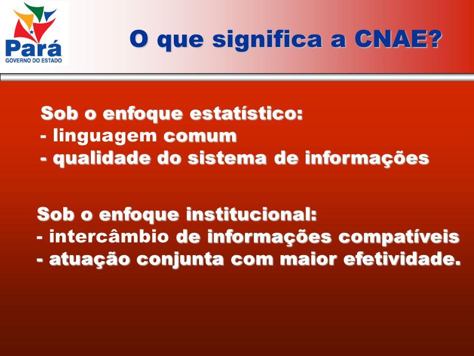 O que significa a CNAE.