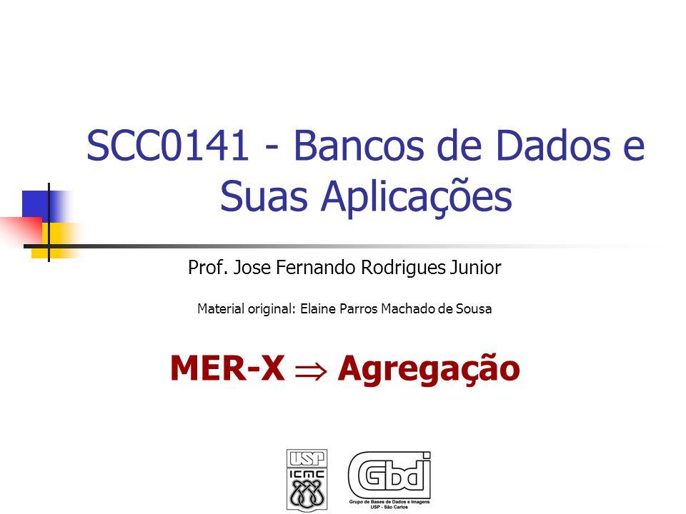 SCC0141 - Bancos de Dados e Suas Aplicações Prof. Jose Fernando Rodrigues Junior Material original: Elaine Parros Machado de Sousa MER-X Agregação